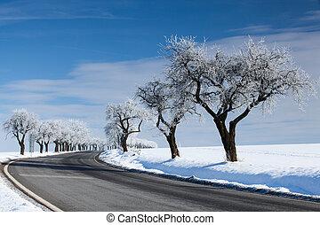 vazio, estrada, em, inverno