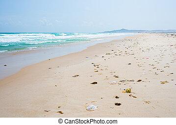 vazio, sand., plástico, problema, deslumbrante, lixo, sea., vietnã, deserto, ensolarado, poluição, daytime., coastline., praia, lixo, oceânicos, waving, tropicais