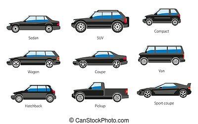 veículo, ícones, car, nomes, carcaça, isolado, tipos, modelo, forma, corporal
