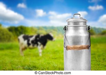 vecchio, alluminio, mucca, contro, lattina, pascolo, latte,...