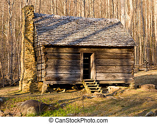 vecchio, cabina, in, montagne fumose