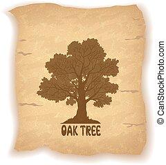 vecchio, carta, albero, quercia
