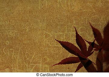 vecchio, carta, con, foglie rosse