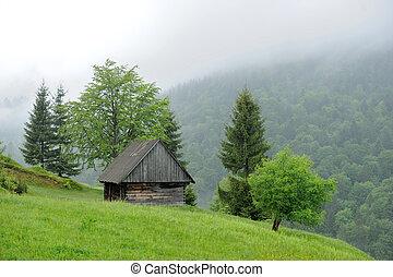 vecchio, casa, in, montagna