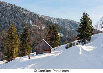 vecchio, casa legno, in, il, inverno