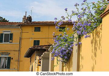vecchio, centro, case, pisa, storico, italia