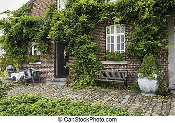 vecchio, fattoria, con, verde, piante, su, parete