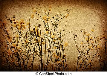 vecchio, fiore, carta, tessiture, -, perfetto, fondo, con,...