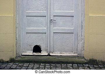vecchio, legno, sporco, porta principale, bianco