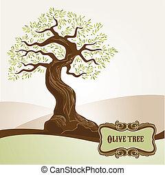 vecchio, olivo