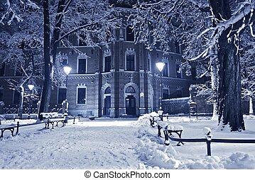 vecchio, parco, in, inverno