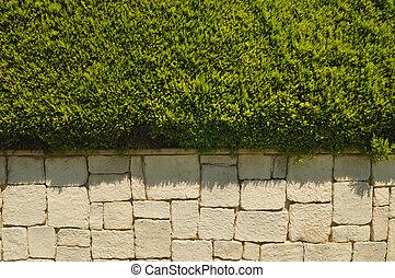 vecchio, parete, cespuglio, pietra, mattone