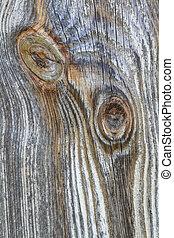 vecchio, ramo, legno, nodo, tronco, asse