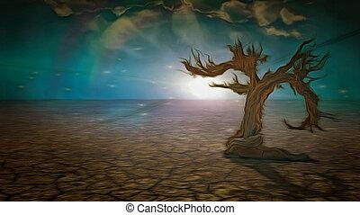 vecchio, siccità, albero, land.