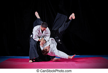 vechten, tussen, twee, aikido, vechters