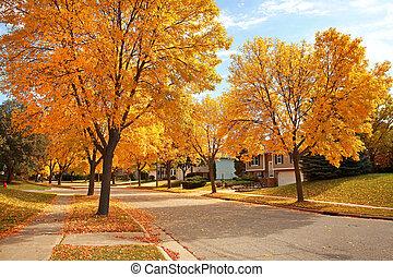 vecindario residencial, en, otoño