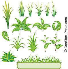 vecteur, éléments, vert, illustration., design.