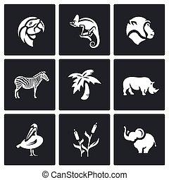vecteur, afrique, ensemble, animaux, icônes