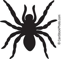 vecteur, araignés