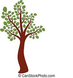 vecteur, arbre, orme