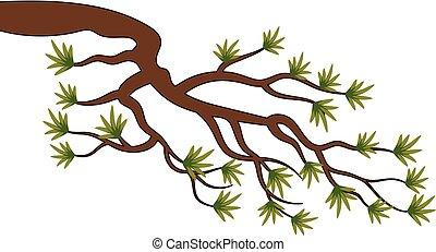 vecteur, arbre, pin, branche