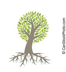vecteur, arbre, racines