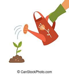 vecteur, arrière-plan., plante, gant, eau, sproutwith, plat, possession main, blanc, homme, main., arrosage, falling., humain, can., boîte, isolé, gouttes, illustration