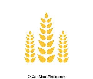 vecteur, blé, icône