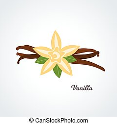 vecteur, boîtiers, vanille, fleur, -