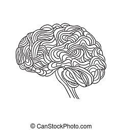 vecteur, cerveau humain