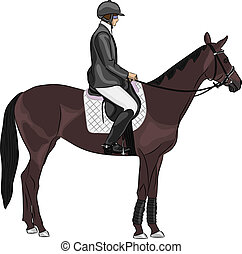 vecteur, cheval, jockey