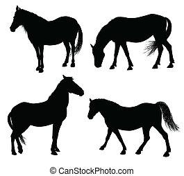 vecteur, cheval, silhouette