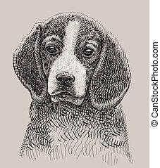 vecteur, chien, dessin