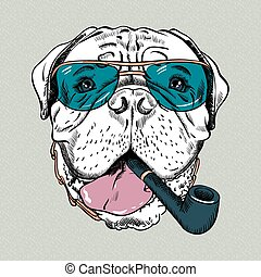 vecteur, chien, hipster, rigolote, dessin animé, bullmastiff