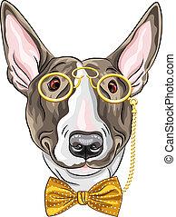vecteur, chien, hipster, rigolote, dessin animé, bullterrier