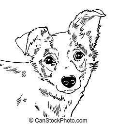 vecteur, chien, illustration