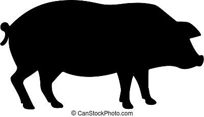 vecteur, cochon, icône, silhouette