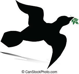 vecteur, colombe, illustration
