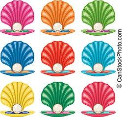 vecteur, coloré, ensemble, de, perle, dans, a, coquille, icônes