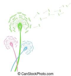 vecteur, coloré, pissenlit, voler, illustration, graines, blanc, fleurs, stockage