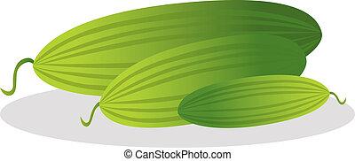 vecteur, concombre, illustration.