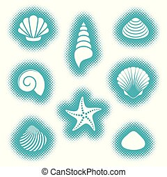 vecteur, coquilles, mer, etoile mer, icônes