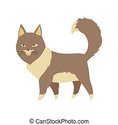 vecteur, dessin animé, fourrure, illustrations., mignon, kittie, chat, coloré, ou