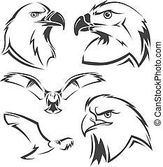 vecteur, ensemble, aigle, faucon, mascottes