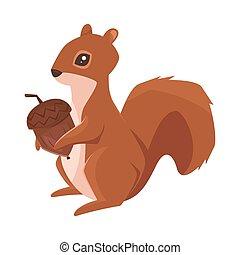 vecteur, gland, écureuil, style, dessin animé, illustration