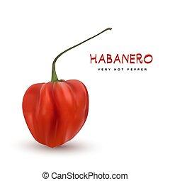 vecteur, habanero, 3d, poivre piment, rouges, illustration
