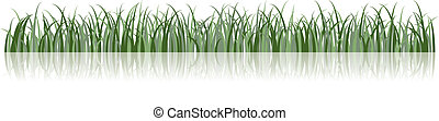 vecteur, herbe, illustration