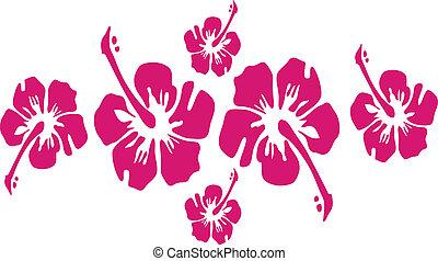 vecteur, hibiscus