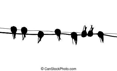 vecteur, hirondelle, migrer, silhouette