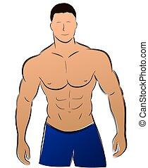 vecteur, homme muscle